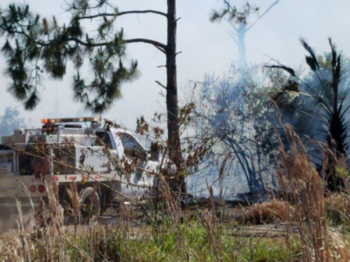 Crews contain wildfire in Fort Pierce preserve | Local NEWS Shared By West Delray Collision Center